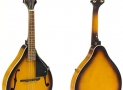 The 8 Best Mandolin Under 1000 Dollars